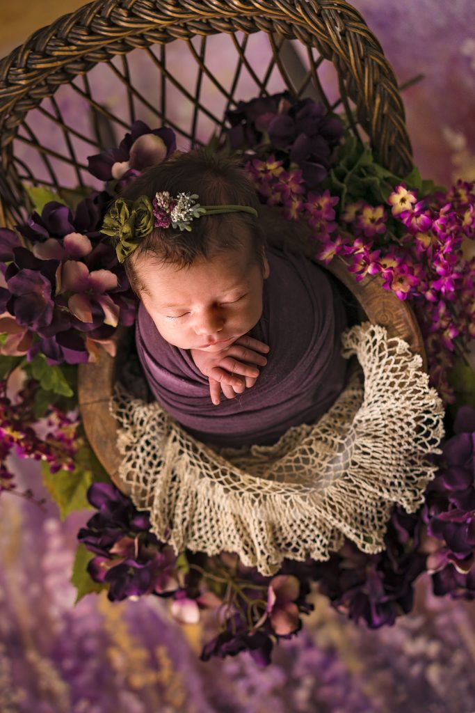 Newborn Portrait of a Baby Girl